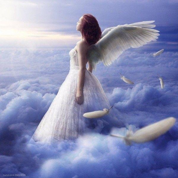 """Résultat de recherche d'images pour """"belle image d'un ange"""""""